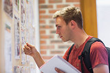 Handsome student studying notice board