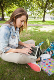 Pretty focused student sitting on grass using laptop