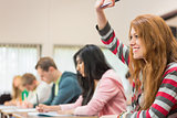 Female student raising hand by others in classroom