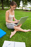 Student using laptop with books at the park