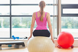 Fit beautiful woman sitting on exercise ball
