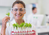 Smiling female scientist analyzing young plants at lab