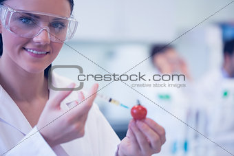 Close up of scientific researcher injecting tomato at lab