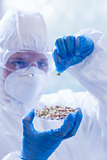 Scientist in protective suit with sprouts in laboratory