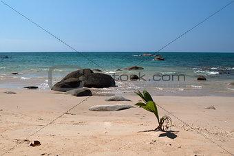 beach of southern Thai sea
