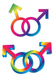 Male Gay Gender Symbols Intertwined Illustration
