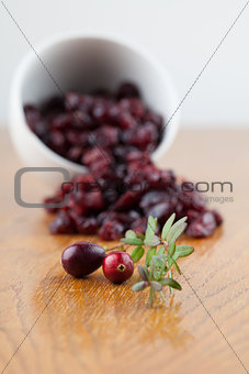 Fresh and dried cranberries