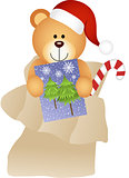 Teddy Bear in Mailbag Christmas