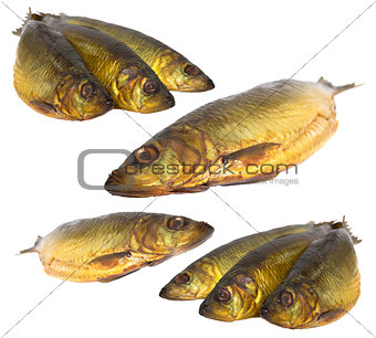 Set fresh sea fishes lie nearby on a white background