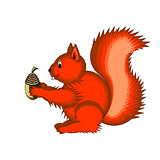 Cute cartoon squirrel on a white background