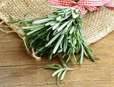 Organic bunch of fresh rosemary
