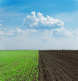 green and black ploughed field under blue sky