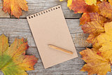Blank page and colorful autumn maple leaves
