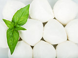 Small pieces of mozzarella and basil
