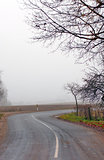 Trees and road in fog in Autumn