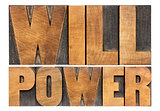 will power in wood type