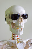 sunglasses skull