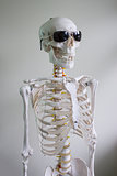 skeleton with sunglasses