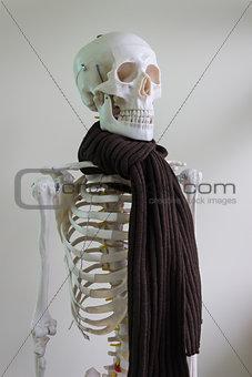 skeleton wearing scarf
