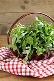 large bunch of arugula green salad
