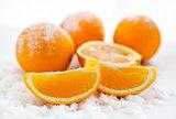 Oranges  on the snow