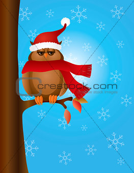 Great Horned Owl with Santa Hat on Tree