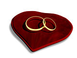 wedding rings on a red cushion
