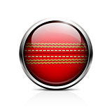 Icon Ball for cricket. Glass shiny button-ball cricket
