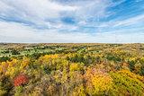 Autumn colored scene