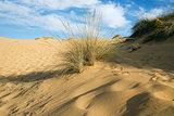 Dunes under a blue sky