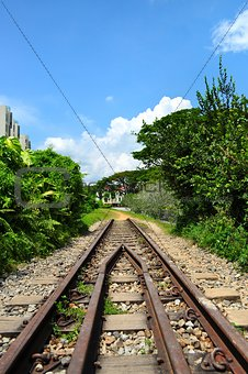 A former Railway track at Bukit Timah