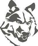 Portrait of dangerous wolf