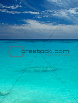 A Tropical Sea, with visible coral reef