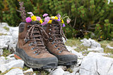 Hiking boots with flowers in the mountains