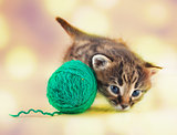 little kitten playing with a ball