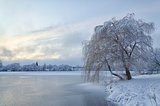 Winter landscape with lake and tree in the frost