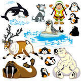 set with cartoon arctic