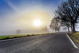 rural foggy road going to the sunrise