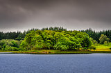 Idyllic island in the lake with green trees, Scotland