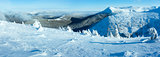 Winter mountain panorama with snowy trees (Carpathian, Ukraine)