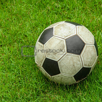 Green grass soccer field with ball