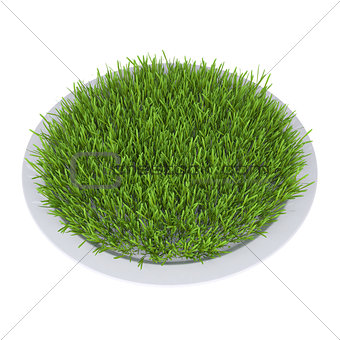 Green grass on a plate