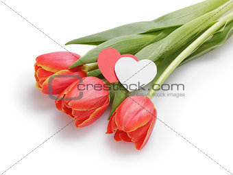 Three tulips with paper hearts