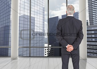 Rear view of mature serious businessman posing