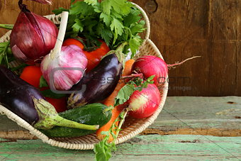 autumn harvest vegetables