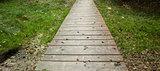Wooden walkway along grassland