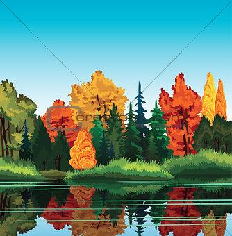 Autum landscape.