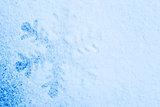 Snowflake on the snow. White xmas holiday background.