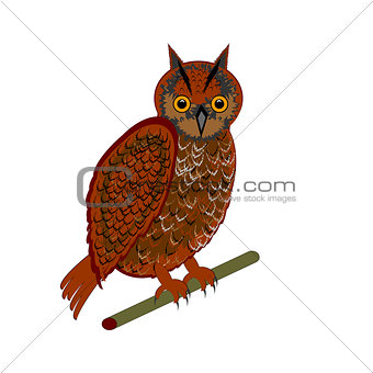 An owl on a white background