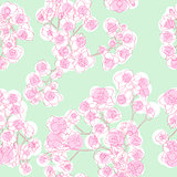 colored orchids pattern